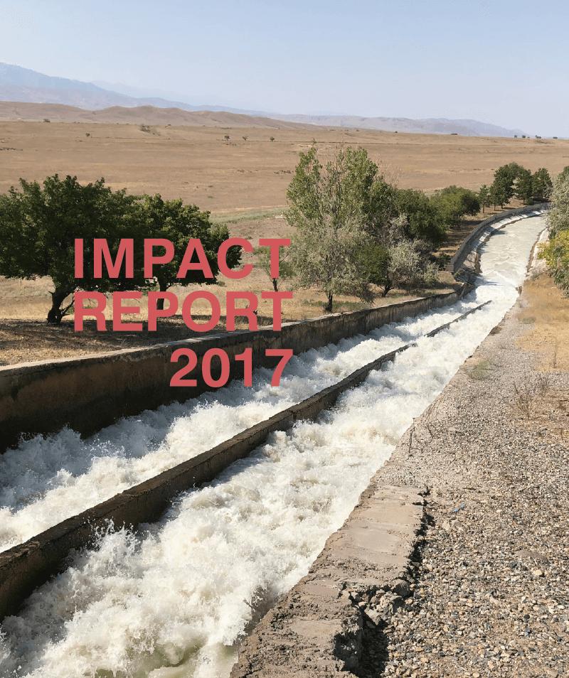 2017_Impact_Report